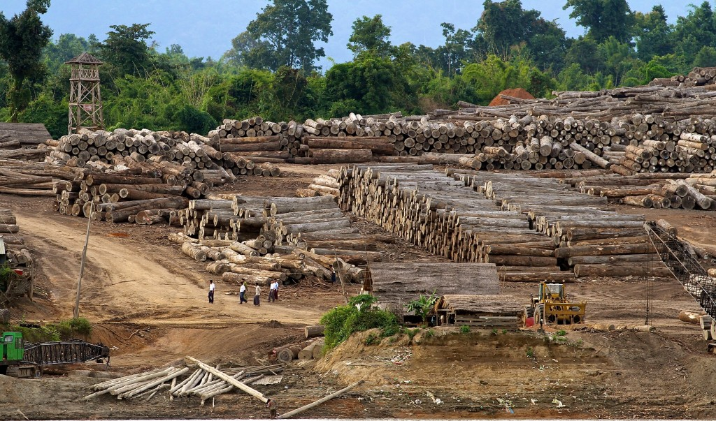 Logging camp_Myanmar_shutterstock_261884510
