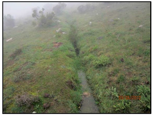 An infiltration ditch sponges up water that would otherwise surge down the mountainside. (Photo Credit: Sonja Bleeker)