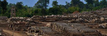Environmental peace-building in Myanmar