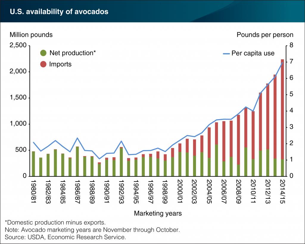 Avocado imports grow to meet increasing U.S. demand