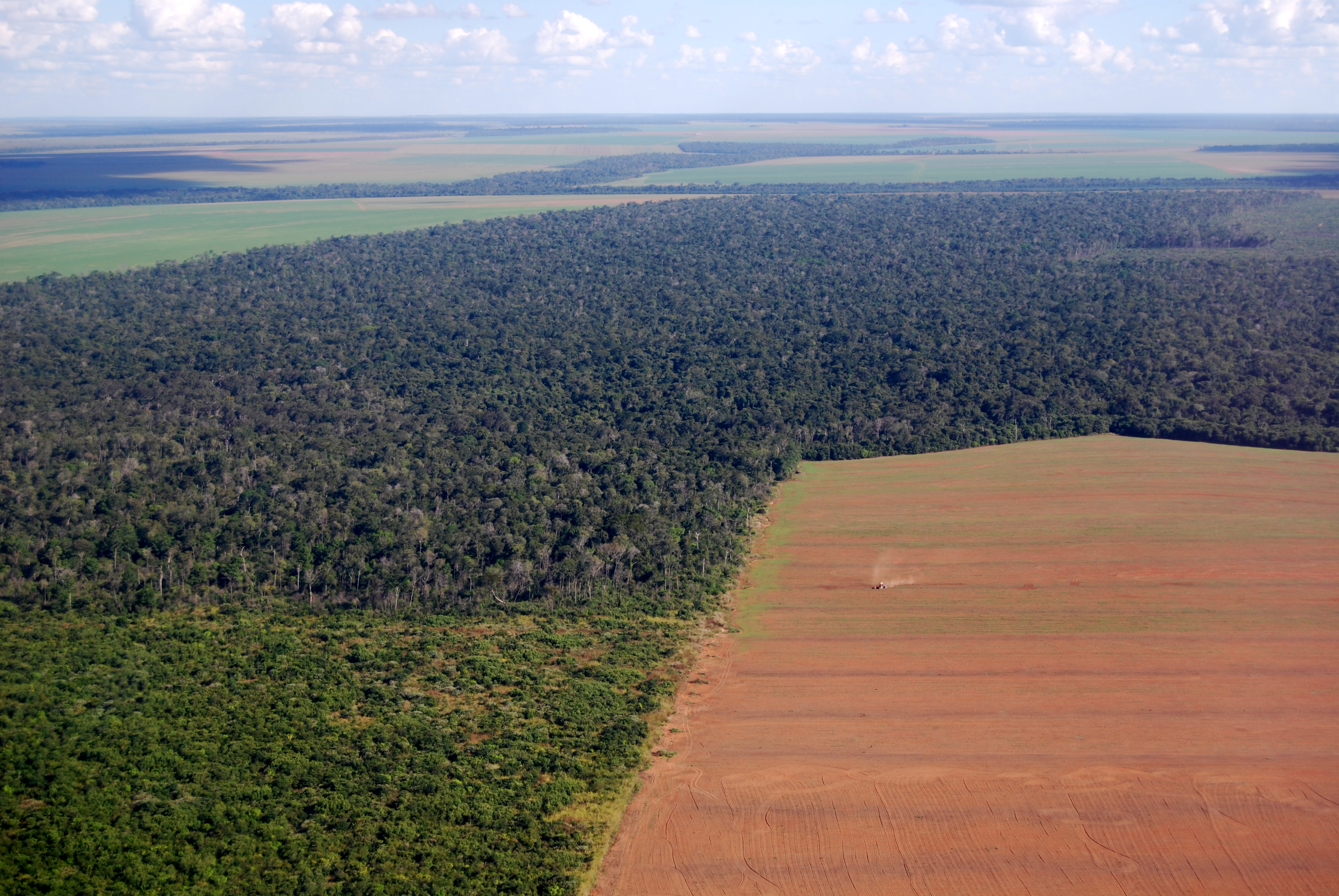 Forest Trends shows the link between commercial agriculture and illegal deforestation