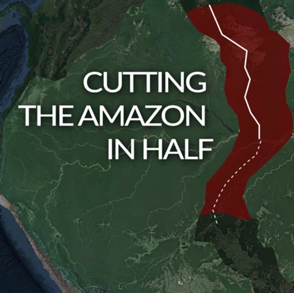Conservationists see amazon highway as big issue in 2018 forest trends after a decade of lower and lower rates of deforestation the amazon forest is again under threat scientists say a new development project could become a gumiabroncs Gallery