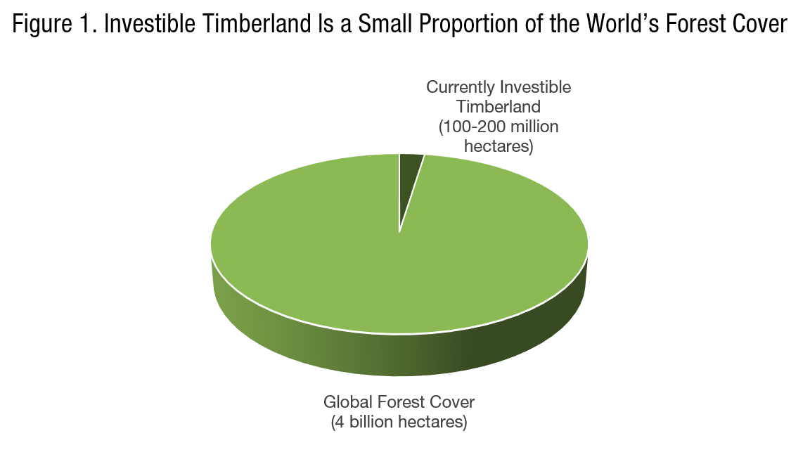 A Financial Architecture for Global Carbon Sinks: A New Forestry Investment